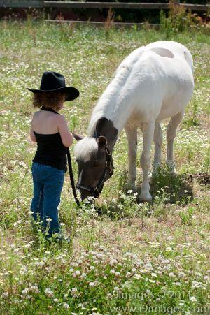 Pony-6303.jpg