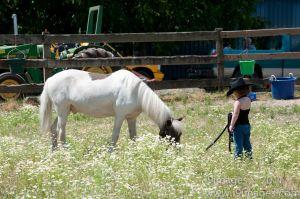Pony-6304.jpg