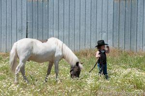 Pony-6306.jpg
