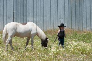 Pony-6308.jpg