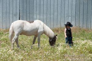 Pony-6309.jpg