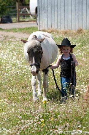 Pony-6318.jpg