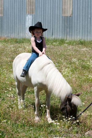 Pony-6334.jpg