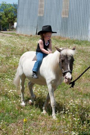 Pony-6336.jpg