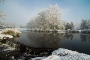 Ice-4079.jpg
