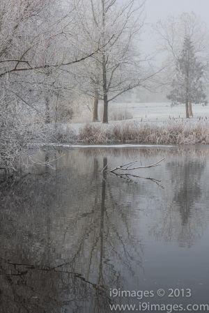 Ice-4102.jpg