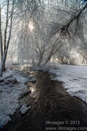 Ice-4160.jpg